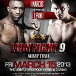 Официальный постер LION FIGHT 9
