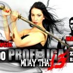 Profiliga Muay Thai XIII 1 июня
