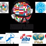 Приближаются Всемирные Игры боевых искусств 2013