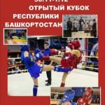 Кубок Республики Башкортостан 30 ноября-1декабря