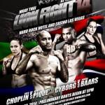 Постер Lion Fight 14