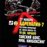 Чемпионы муайтай возвращаются на профессиональный ринг!