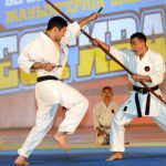 Чемпионы мира по тайскому боксу проведут мастер-класс для школьников Астаны